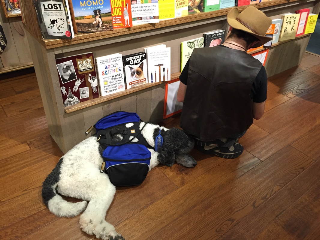 working dog shopping in NY