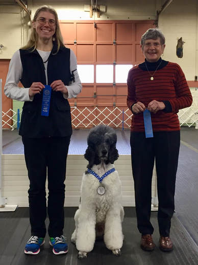 UKC Utility Dog obedience title